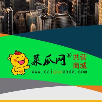 菜瓜网共营商城平台成功案例